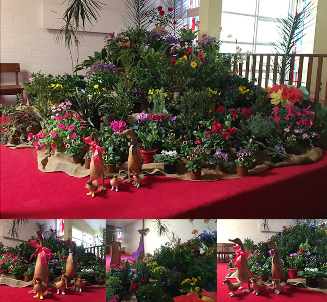 Easter Garden St Martins